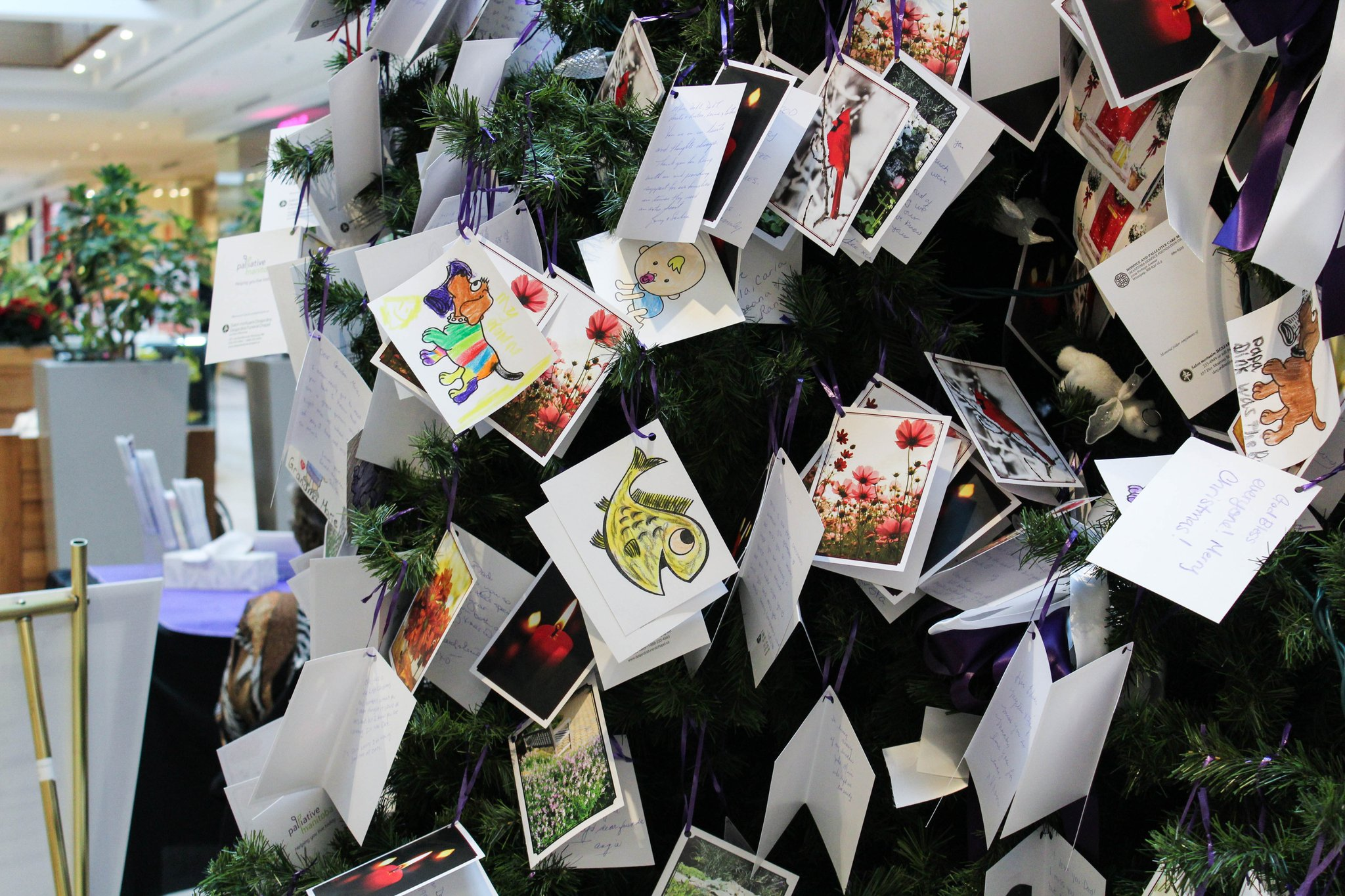 The Memory Tree goes up in St. Vital Centre!