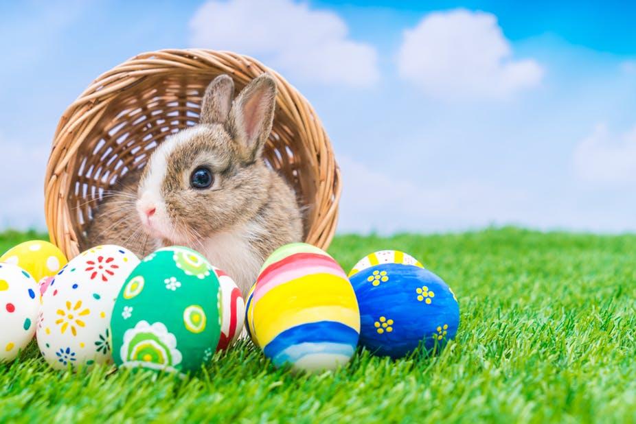 Easter Holiday Week End Happenings!