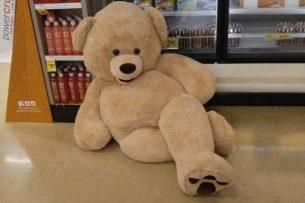 Beary Seductive Pose!
