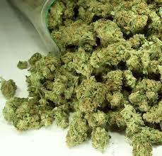 Enderby Passes Marijuana Bylaw