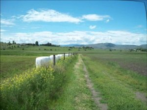 BC Ranch To Mutrie Park Trail Work To Begin