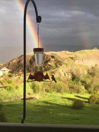 Rainbow Photos Anyone?