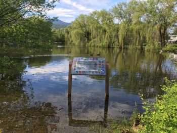 No Flood Control Measures For Lagoon