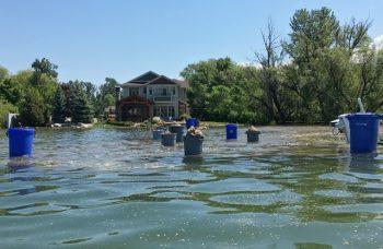 Lake Level Update