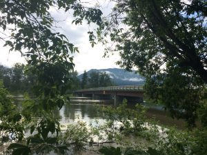 enderby-flood-5-shuswap-river