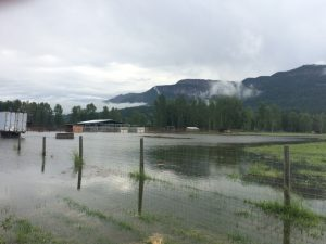 enderby-flood-june-2-2