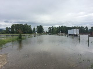 Update: Levels Rising on Shuswap River, New Pictures