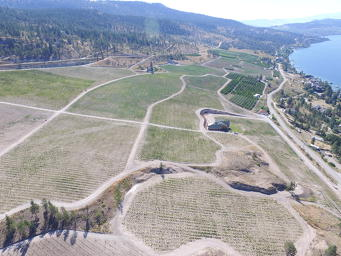 Lake Country Looks at Winery Expansion