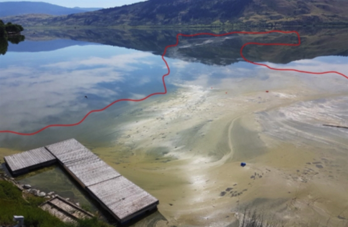 Algae Bloom In North Arm Of Okanagan Lake