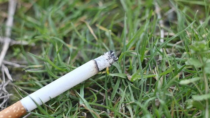 Tossed Cigarette Butt Fuels Frustration