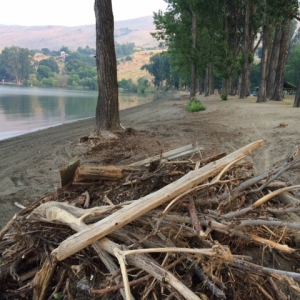 Flood Debris Removed From Beaches