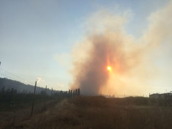 Tip Line Set-Up For Wildfire Info