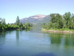 Shuswap River Management Not Settled