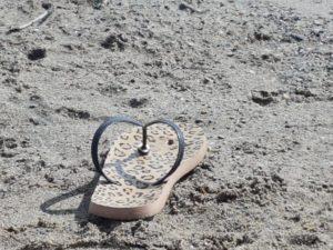 flip-flop-today1