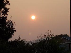sun-today-2