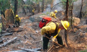 Update on RDCK Wildfires