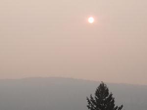 sun-now-2