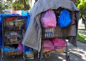 Shopping Cart Program May Get Rolled Out
