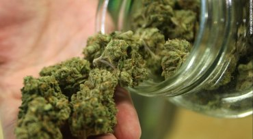 Coldstream Hesitant On Cannabis Sales For Now