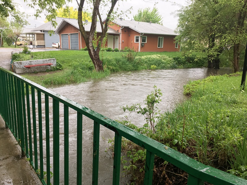Creek Levels Rise After Rain