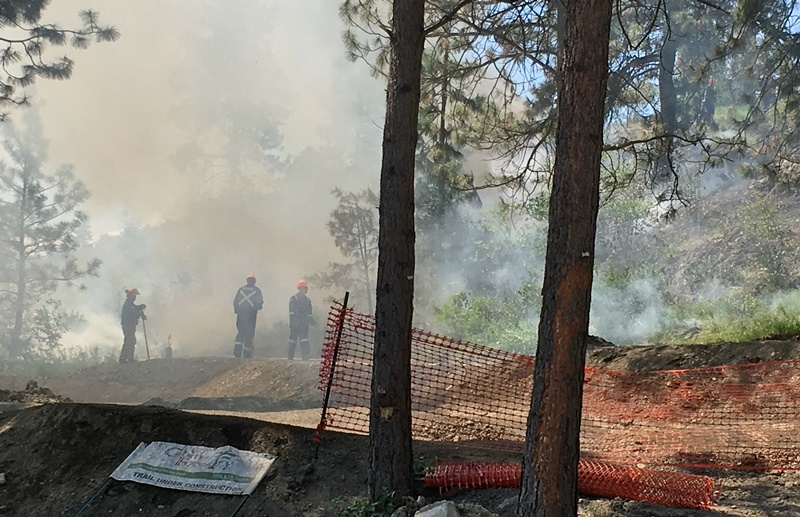 Update: Controlled Burn in Park Over