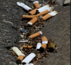 Butt Blitz Scores Tens Of Thousands Of Cigarette Butts