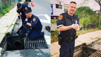 Police Save Mother's Day for a Mother Duck