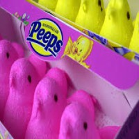 Peep Eating Contest