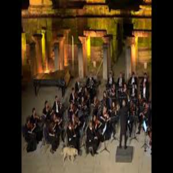 Dog crashes outdoor orchestra performance in Turkey.