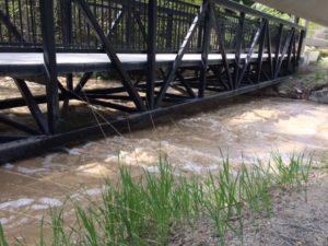 ped-bridge