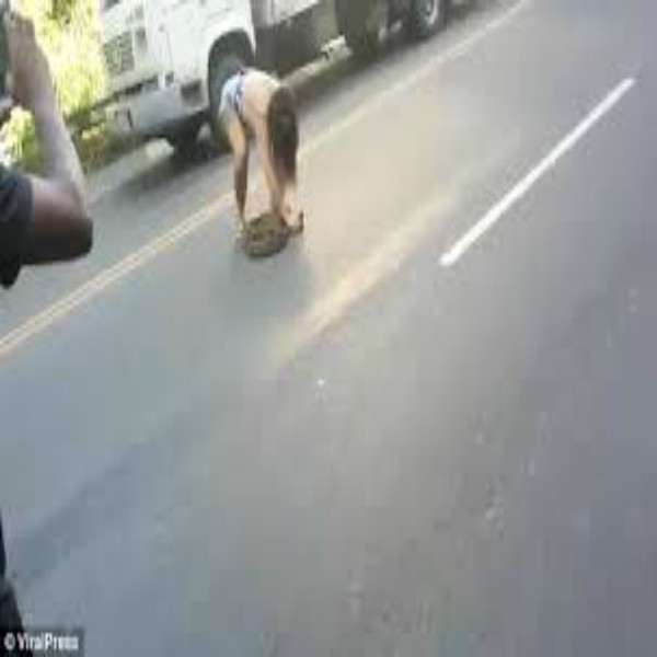 Woman  removes a seven-foot python from Road