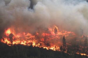 Bald Mtn fire in Chilcotin: BC Wildfire photo