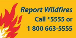report-wildfires