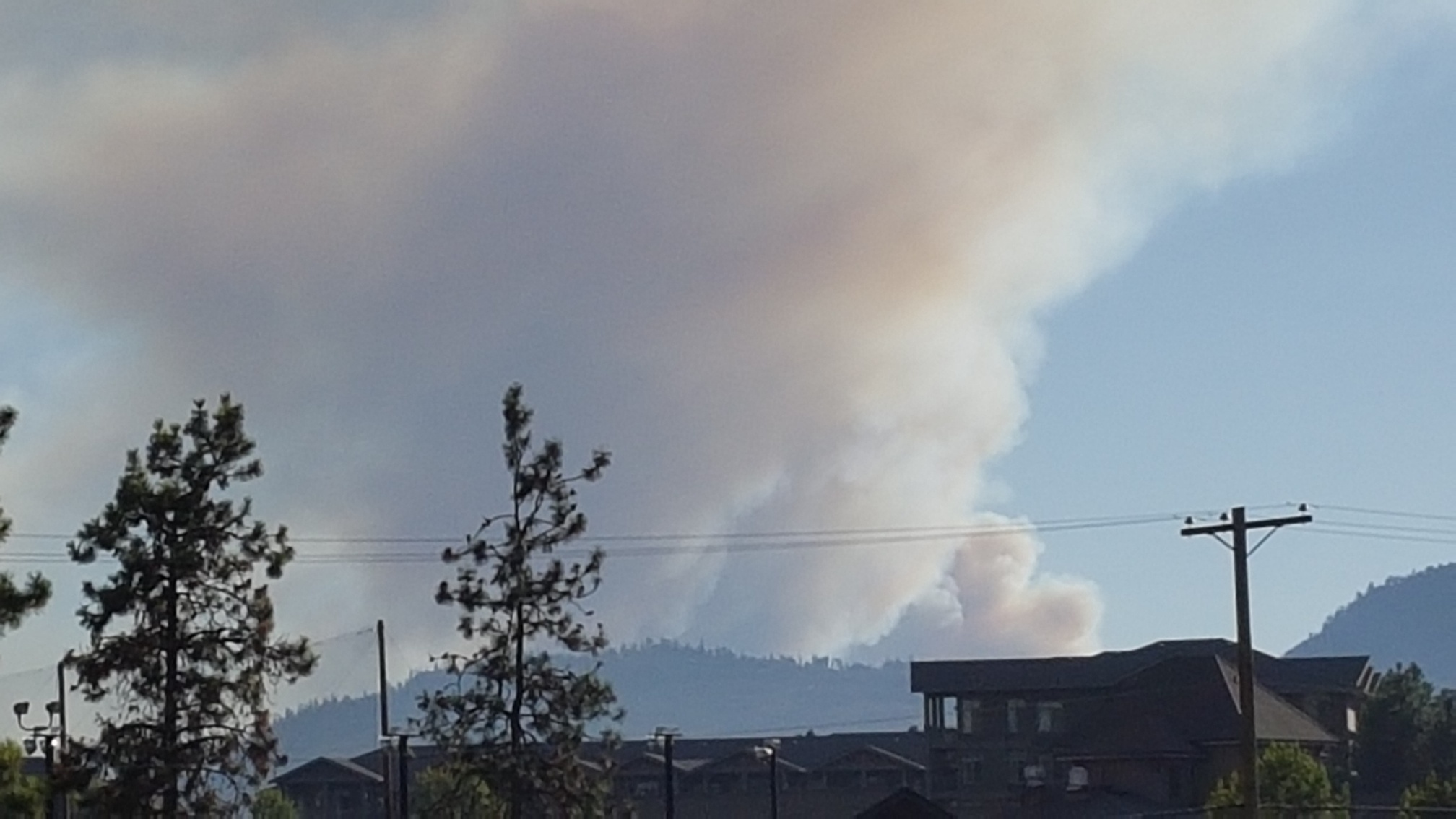 BC Wildfire Scaling Back Finlay Creek, Bears in Regional Parks and YLW Wants Local Artists