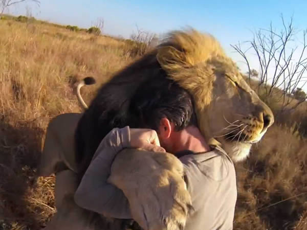 Animals Hugging Humans - Seriously!!!