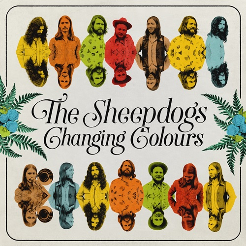Sheepdogs - I've Got A Hole Where My Heart Should Be