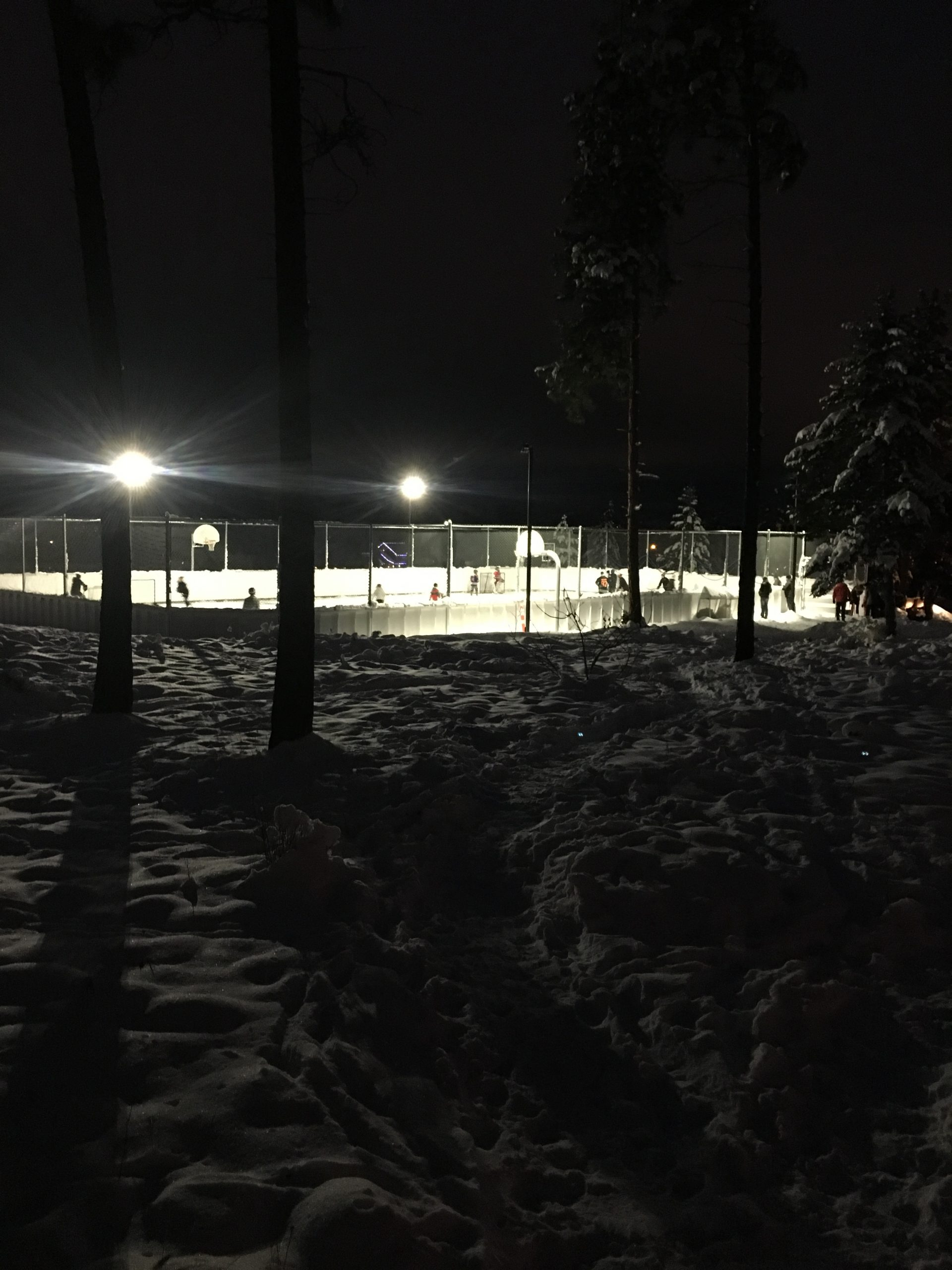 Skating anyone?