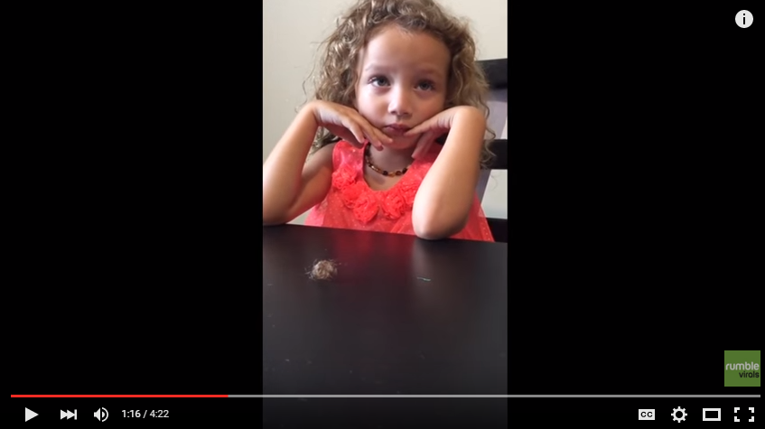 Little Girl Is Beyond Sorry When She Gets Caught Cutting Her Little Sister's Hair - WATCH