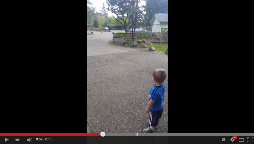 2 Year Old Has Adorable Conversation With A Bunch of Wild Turkeys - WATCH
