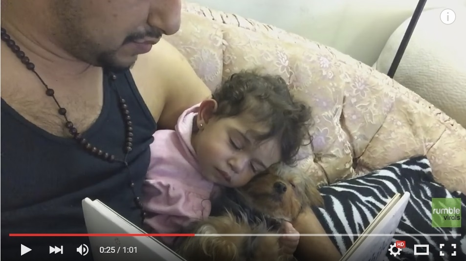 Little Girl And Her Puppy Fall Asleep Together While Dad Reads Them A Story - WATCH