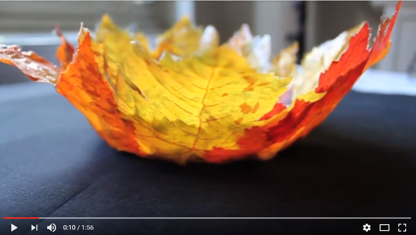 Grab All Those Beautiful Leaves Out There And Make Yourself A Bowl - WATCH