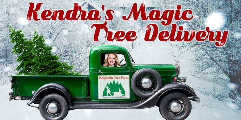 I've Been Preparing For My Magic Tree Delivery On Sunday & I Cannot Wait!