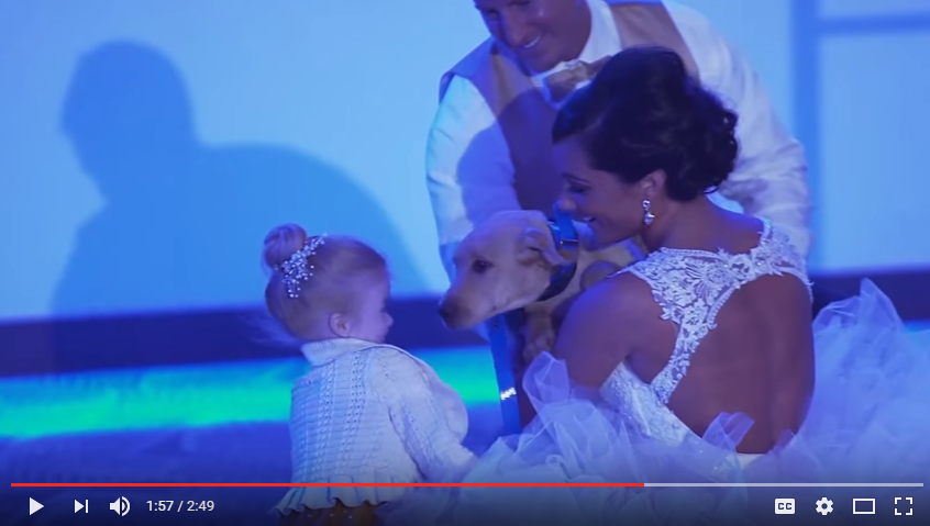 Groom Surprises Wife By Growing Their Family From 2 to 3 During His Speech - WATCH