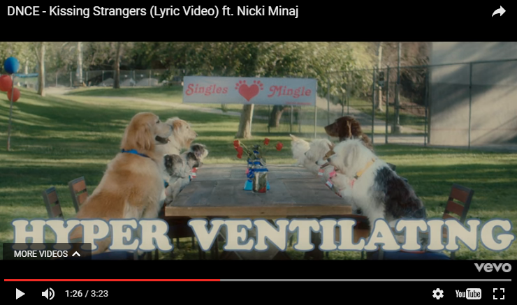 "If you love dogs you're gonna love the new DNCE & Nicki Minaj lyric video for ""Kissing Strangers"". WATCH:"