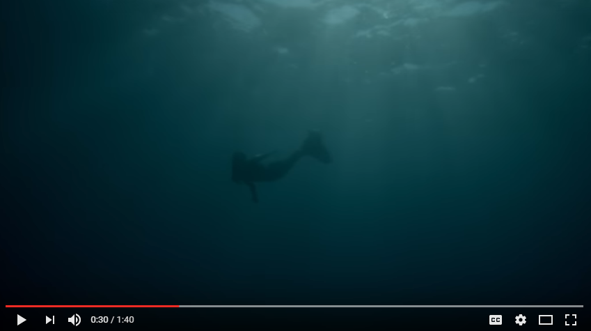 New Documentary Showcases Mermaids Like You've Never Seen Them Before - WATCH