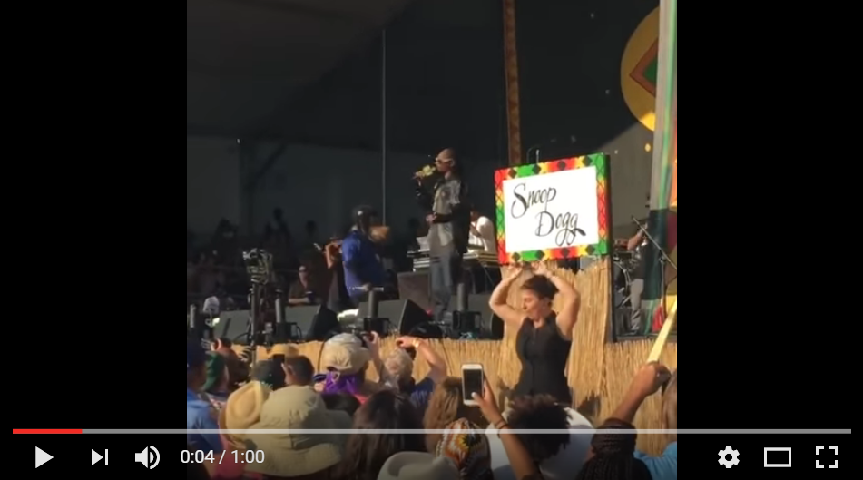 Snoops Dogg's Sign Language Interpreter Kills It During Show In New Orleans - WATCH