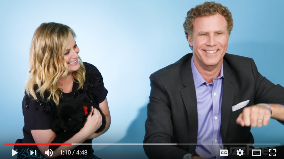 Will Ferrell & Amy Poehler Play With Puppies While Talking About New Movie 'The House' - WATCH