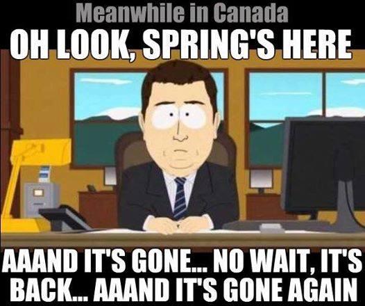 spring_annnnd_gone