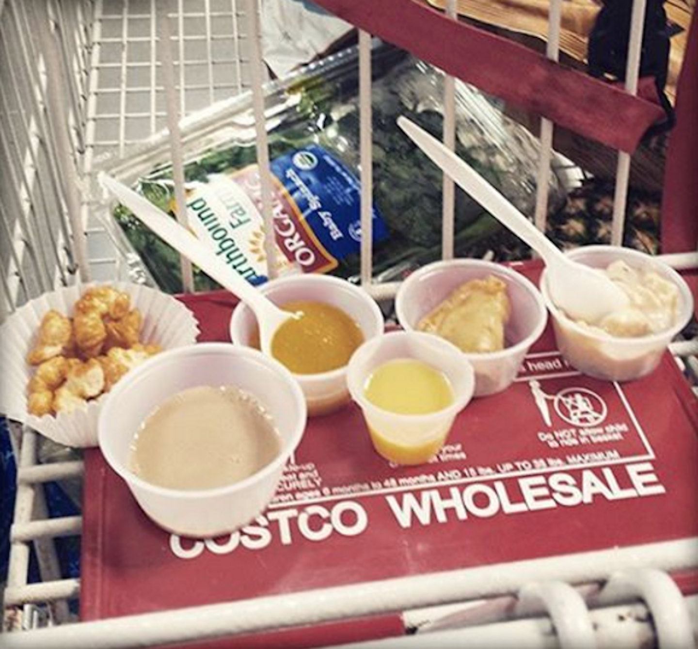 Did you know: There's NO LIMIT to how many Costco samples you can have? TRUTH.