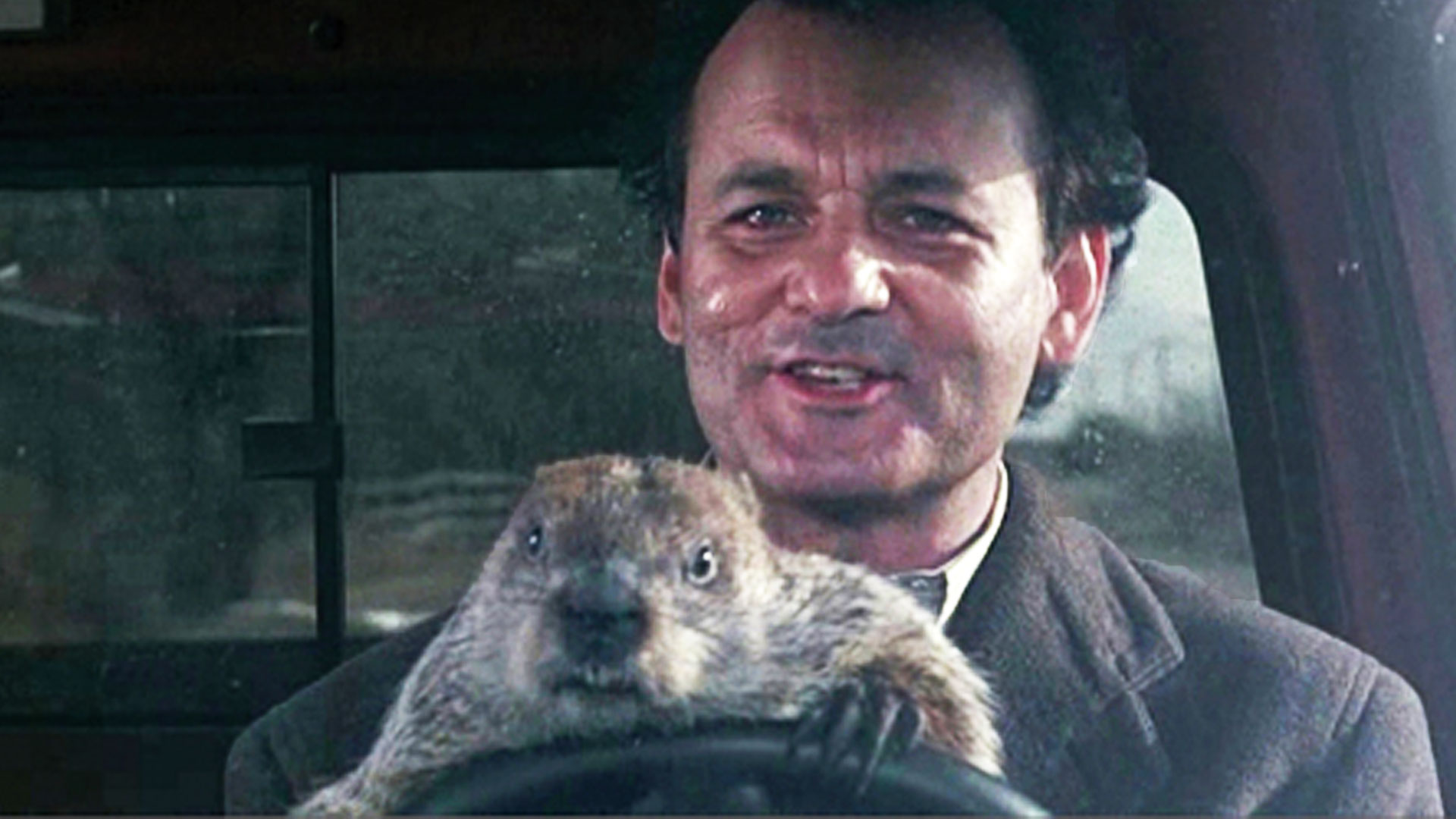 GROUNDHOG DAY - Some fun FACTS!